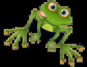 žába průhledná2